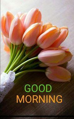 852 best good morning