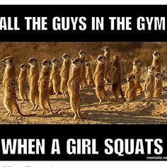 Diet and Fitness Humor, Fitness Funny, Fitness Memes, Gym Memes, Gym Funny, Diet, Weight Loss, Fat Loss, Crossfit, Exercise, Workout, Fit Fam, Cardio, Training, Trainer, Bootcamp, Squats, Burpees, Lunges, Leg Day, Push ups, Jillian Micheals, Gym, Gym Time, Gym Addict, Gym Freak, Gym Rat, Fit Freak, Fit Mom, Fitness Addict, Kettle Bells, Fitspo, Booty Building, Gym Booty, Beachbody,JK Commerce