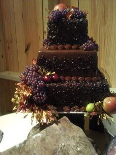 http://tinacakes.com/images/Cakes%20Oct.%202011/Chocolate%20Cake%20covered%20with%20fruit.jpg