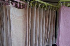 洗濯物 (Laundry)