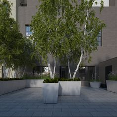 Rendering for large NYC terrace Lindsey Taylor gardens