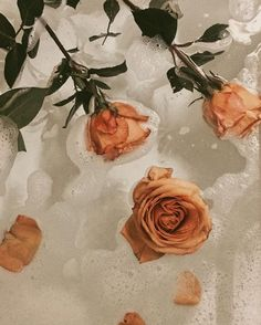 I'll take my bath with Roses please!