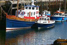 Mallaig es un pueblo con puerto pesquero, lleno de gente de paso, gente que espera salir hacia la Isla de Skye o como nosotros que esperamos el tren de vapor The Jacobite para ir hasta Fort William.