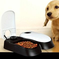 Automatic Pet Feeder 2 Meals Dog Cats Kitten Puppy Wet Dry Food Easy Clean NEW  http://www.ebay.co.uk/itm/Automatic-Pet-Feeder-2-Meals-Dog-Cats-Kitten-Puppy-Wet-Dry-Food-Easy-Clean-NEW-/252528416032?hash=item3acbddd520:g:J5IAAOSwOdpXzwEI   Get This  Deal