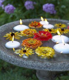 Transform your everyday birdbath into a decorative garden element.