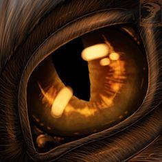 """Dragon's Eye.  """"Dragon Eyes"""""""