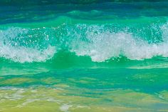 Blue curl4, Photograph by Emily Byers