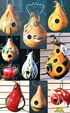 gourd birdhouses  how about polishing then mod podging thin designs (napkins?) on top and sealing?  small gourds too?