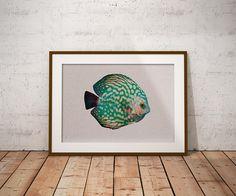 Discus Fish Art  Green Blue Fish  Minimalist Fish Art