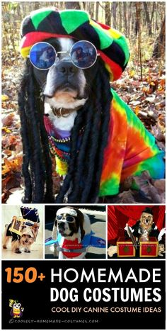 Ideas for over 150 homemade dog costumes to dress up your best friend for fun or Halloween. So much cuteness!