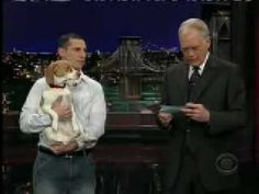 "Baily Beagle ""Plays Dead"" - David Letterman"