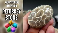 How to make Faux Petoskey Stone from Polymer clay! Unique video tutorial!