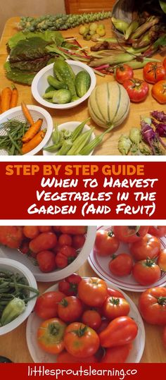 Do you know when to harvest vegetables in the garden, and fruit? It's sometimes hard to tell when the produce is perfectly ready.