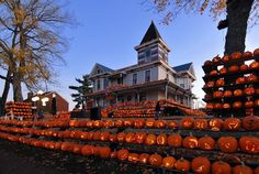The Pumpkin House /  - - Your Local 14 day Weather FREE > http://www.weathertrends360.com/Dashboard  No Ads or Apps or Hidden Costs.
