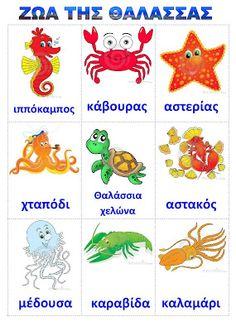dreamskindergarten Το νηπιαγωγείο που ονειρεύομαι !: Λίστες αναφοράς για τα ψάρια και τα ζώα της θάλασσας Greek Language, Speech And Language, School Lessons, Lessons For Kids, Preschool Education, Preschool Activities, Learning Letters, Kids Learning, Summer Crafts