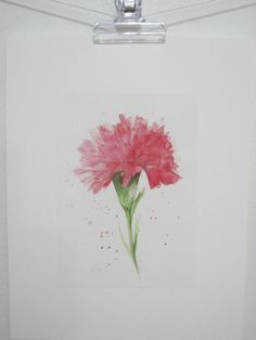 Fine art watercolor painting flower art red CARNATION by ChiFungW