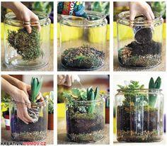 Vytvořte si doma kousek přírody
