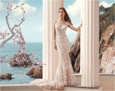 Lady Marmalaide   Mooi Troues #weddinggowns #demetriosbride #wedding #bride #weddingboutique #laceweddinggown #wholesaleweddinggown