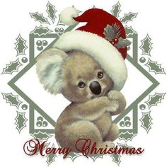 knitting tea party 18 december - Everything About Christmas Christmas Quotes, Christmas Images, Christmas Wishes, Christmas Art, Christmas Greetings, Vintage Christmas, Christmas Ideas, Australian Christmas Cards, Aussie Christmas