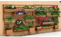 GRO Products Vertical GRO Wall System with 9 Planter Boxes - Maximize your…