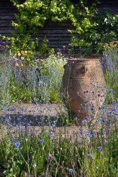 Clare Dawson | Garden Photographer's Association