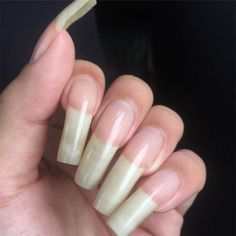 Acrylic Nails At Home, Acrylic Gel, Long Fingernails, Long Nails, Long Natural Nails, Curved Nails, Nails Only, How To Grow Nails, Healthy Nails
