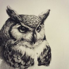 Owl tattoo, realistic, black and white Owl tattoo, realistic, black and white Owl Art, Bird Art, Owl Tattoo Design, Tattoo Designs, Tattoo Ideas, Black Tattoos, Body Art Tattoos, Circle Tattoos, Animal Drawings