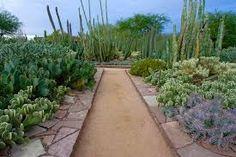 desert entry walkway - Google Search