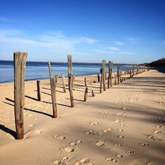 It's not quite beach weather yet but we can still soak in the sun. #beachweather #winterbeach #longisland #longislandsound by cb2