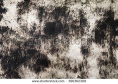 Detailed view of dark brown and white background with rusty grunge texture effect. Photo of the wall covered with seaweed.