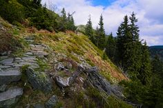 https://flic.kr/p/HgeHF3 | Goat Cliffs in Czech republic