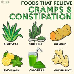 Relieve these pesky symptoms today! Detox Foods, Healthy Detox, Detox Tips, Detox Recipes, Low Fiber Foods, Detox Organics, Constipation Remedies, Irritable Bowel Syndrome, Lemon Balm