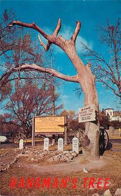 The Hanging Tree as found in Dodge City, Kansas. Old Western Towns, Old Western Movies, Dodge City Kansas, Kansas Attractions, Great Lakes Region, Happy Trails, Us History, Best Western, Wild West
