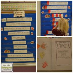 Interactive Poetry Notebooks in Kindergarten?   Check!   and a FREEBIE