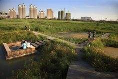 Qunli Stormwater Wetland Park / Turenscape  Potential to incorporate wetland park into/surrounding civic plaza