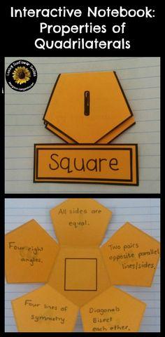 Interactive notebook Quadrilaterals
