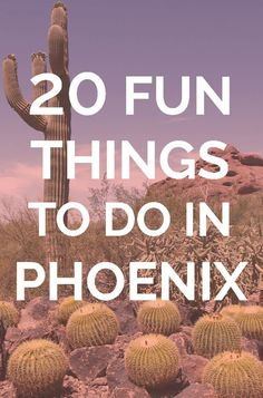 20 Fun Things To Do in Phoenix: Looking for fun things to do in Phoenix Arizona? You've come to the right place! We've found cool places to visit in Phoenix and fun activities in Phoenix for all interests. Phoenix Things To Do, Free Things To Do, Fun Things, Phoenix With Kids, Random Things, Cool Places To Visit, Places To Travel, Places To Go, Travel Destinations
