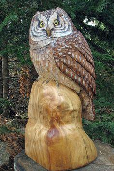 Amazing -- Owl from stump