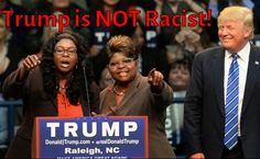 DEBRA GIFFORD (@lovemyyorkie14) | Twitter 79 Reasons to Vote for Donald Trump! http://tl.gd/n_1son5ue #Trump2016