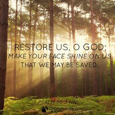 """Psalm 80:3 NIV """"Restore us, o God; make your face shine on us, that we may be saved."""""""