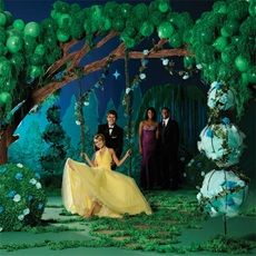 prom theme ideas | Forest Prom Themes http://www.promnite.com/Themes/Prom-Themes ...