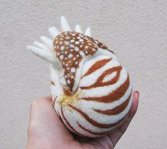 Nautilus needle felted wool ball child friendly art por roommate: