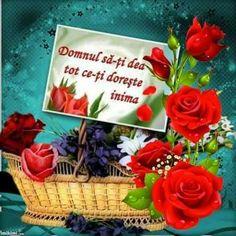 Congratulations, Good Morning, Mornings, Happy Birthday, Islam, Birthday, Good Day, Happy Brithday, Bonjour