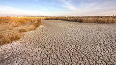 Verdorrtes Feld in Kalifornien (Quelle: colourbox.de)