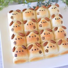 Japan Cake, Cooking Humor, Cute Baking, Bakery Menu, Bread Shaping, Bread Art, Cute Buns, Cute Donuts, Cute Desserts