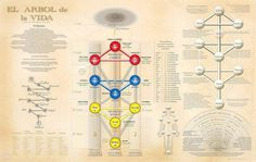 Understanding the principles of the Kabbalah. Each of the 10 sephirots coexist with the balance in the body. Understanding the use of knowledge towards understanding our body will allow us to understand the further awakening that lies ahead. Not only is the sacred knowledge encoded in symbols, but also in life.