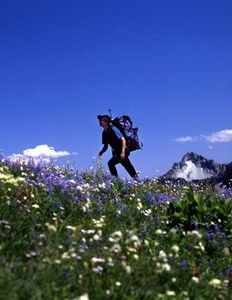 Backpack the 500 mile Camino de Santiago trail from Spain to France.  One day!!!