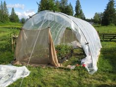 Welcome to our Hoop House Garden