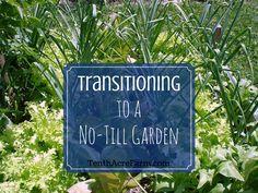 Transitioning to a No-Till Garden – Tenth Acre Farm