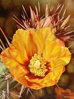 """Buckhorn Boutonniere by Carol Amos Oil ~ 20"""" x 16"""""""